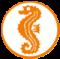 Schwimmabzeichen Seepfredchen: Vom Beckenrand springen und mindestens 25 m mit einer ansprechenden Schwimmtechnik schwimmen, einen Gegenstand aus mindestens brusttiefem Wasser hochtauchen!